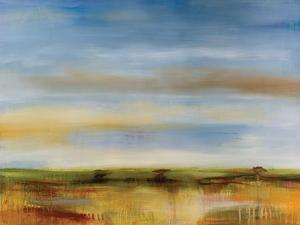 Skyline by Sokol Hohne