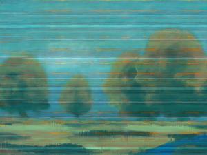 Teal Stripe I by Sokol Hohne
