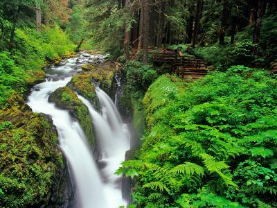 Sol Duc Falls in Olympic National Park, Washington, USA-Chuck Haney-Photographic Print