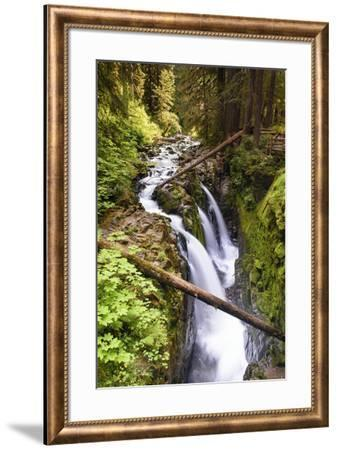 Sol Duc Falls-Michael Blanchette Photography-Framed Giclee Print