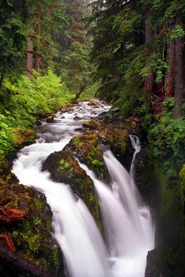 Sol Duc River Falls-Douglas Taylor-Photo