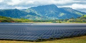 Solar Energy Panels on Field, Poipu, Kauai County, Hawaii, USA