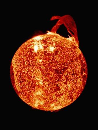 Solar Prominence on Limb of Sun