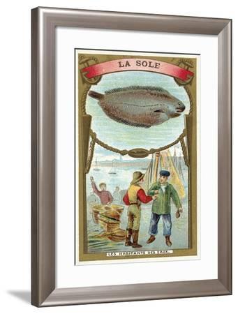 Sole--Framed Giclee Print