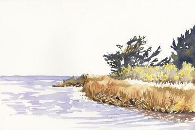 Solitary Coastline III-Dianne Miller-Art Print