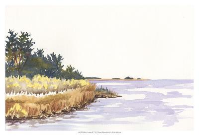 Solitary Coastline IV-Dianne Miller-Art Print