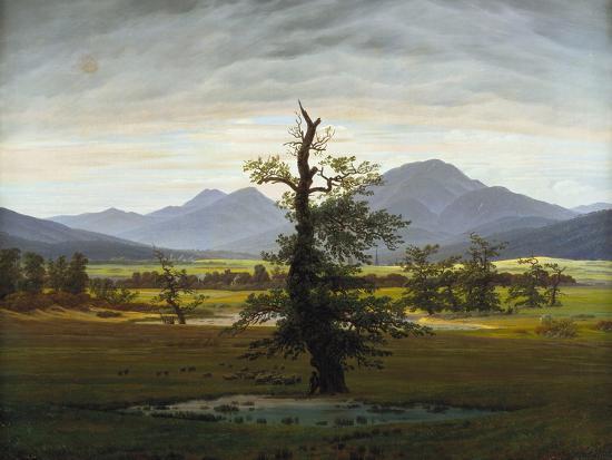 Solitary Tree (Village Landscape in Morning Light), 1822-Caspar David Friedrich-Giclee Print
