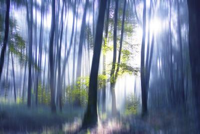 Solitude Bleue-Viviane Fedieu Daniel-Photographic Print