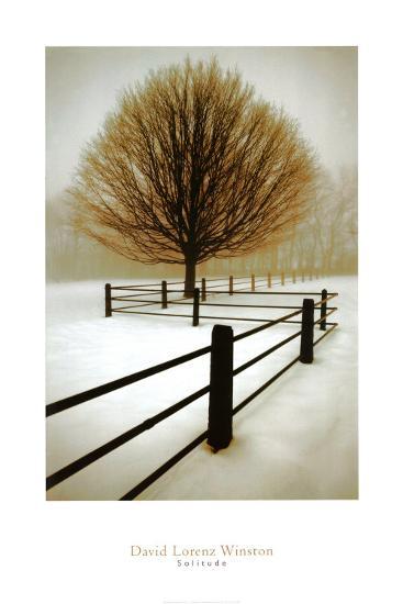 Solitude-David Winston-Art Print