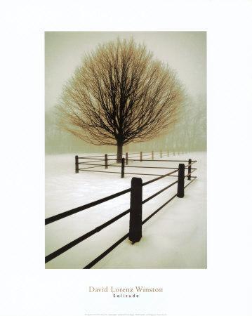 https://imgc.artprintimages.com/img/print/solitude_u-l-ehp440.jpg?p=0