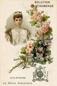 Solution Pautauberge Trade Card, Alexandra of Denmark