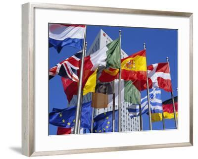 Some of the Flags of the European Union, La Defense, Paris, France, Europe-Neale Clarke-Framed Photographic Print