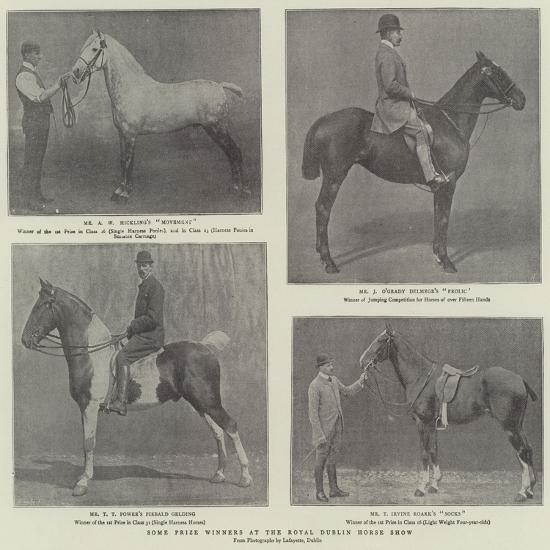 Some Prize Winners at the Royal Dublin Horse Show--Giclee Print