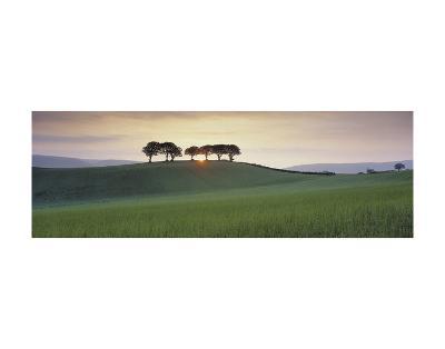 Somerset Sunrise-David Noton-Art Print