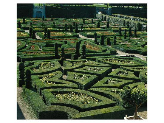 Somptuous Garden III--Art Print