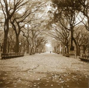 Central Park by Sondra Wampler