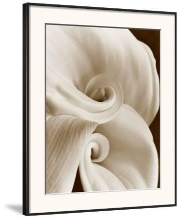 Fleur No. 1