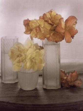 Frosted Glass Vases IV