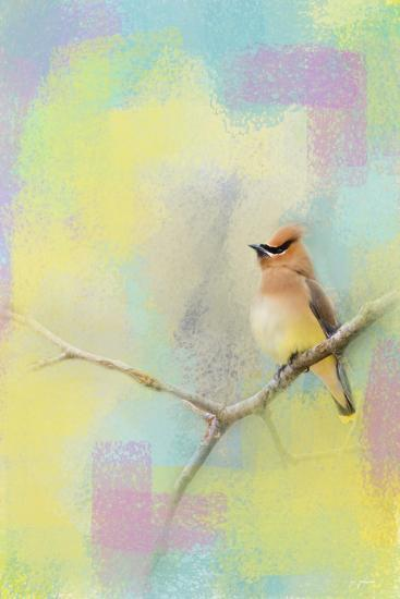 Song of the Waxwing-Jai Johnson-Giclee Print