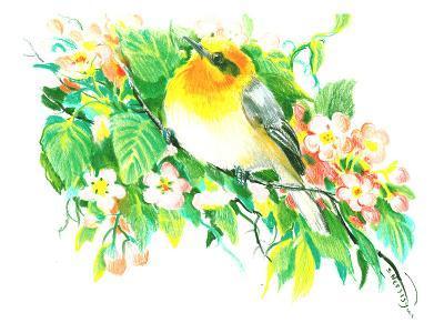 Songbird, Warbler-Suren Nersisyan-Art Print