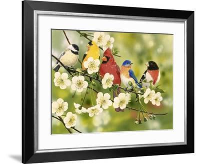 Songbirds on a Flowering Branch-William Vanderdasson-Framed Giclee Print