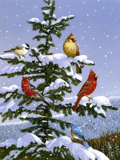 Songbirds on a Limb-William Vanderdasson-Giclee Print