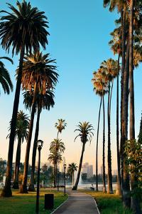 Los Angeles Downtown Park View with Palm Trees. by Songquan Deng