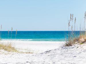 View through the Dunes to the Blue Ocean of Pensacola Beach by Sonja Filitz