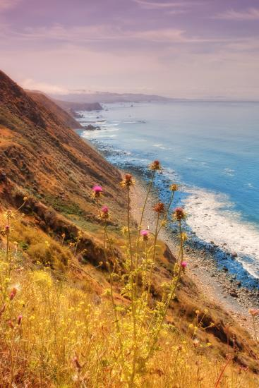 Sonoma Coast Mist-Vincent James-Photographic Print