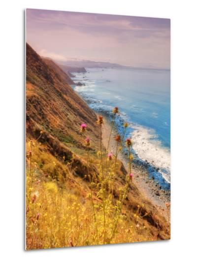 Sonoma Coast Mist-Vincent James-Metal Print