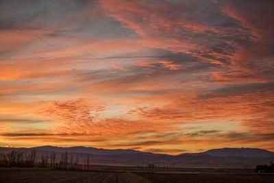 https://imgc.artprintimages.com/img/print/sonoran-sunset_u-l-q1fyf2x0.jpg?p=0