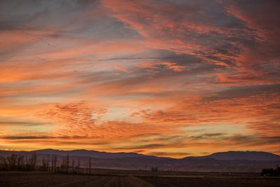 https://imgc.artprintimages.com/img/print/sonoran-sunset_u-l-q1fyf3n0.jpg?p=0