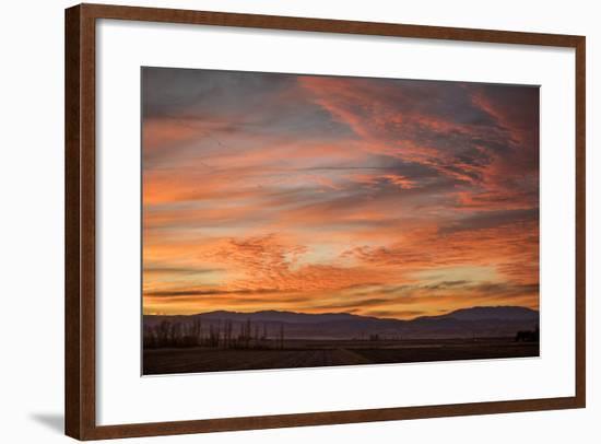 Sonoran Sunset-Aaron Matheson-Framed Photographic Print