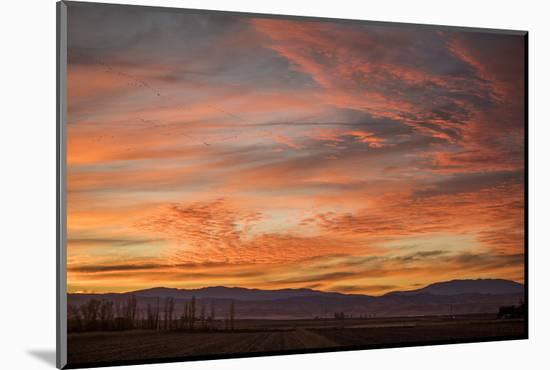 Sonoran Sunset-Aaron Matheson-Mounted Photographic Print