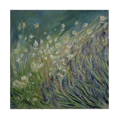Lavender and Daisies, 2010