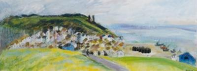 View from West Hill, 2010 by Sophia Elliot