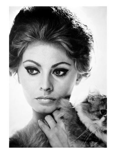 Sophia Loren (1934-)--Giclee Print