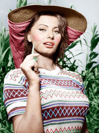 Sophia Loren, ca. 1956
