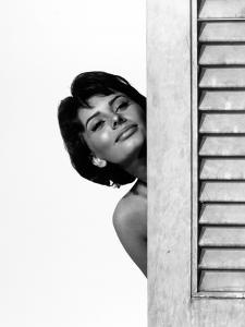 "Sophia Loren. ""Houseboat"" 1958, Directed by Melville Shavelson"