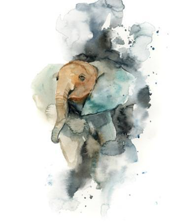 Baby Elephant by Sophia Rodionov
