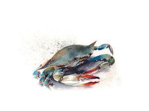 Crab II by Sophia Rodionov