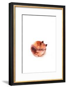 Curled Fox by Sophia Rodionov