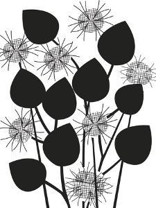 Graphic Nigella by Sophie Ledesma