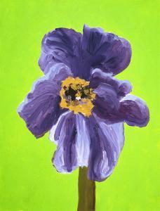 Purple Poppy by Soraya Chemaly