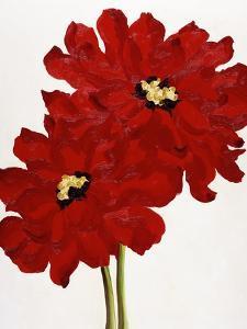 Red Splendor I by Soraya Chemaly