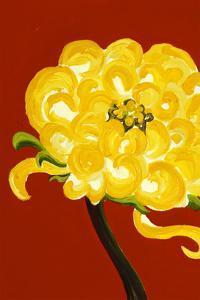 Yellow Chrysanthemum by Soraya Chemaly