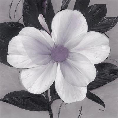 Sorbet Bloom 1-Ivo Stoyanov-Art Print