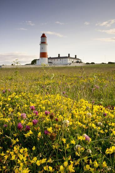 Souter Lighthouse; South Shields Marsden South Tyneside Tyne and Wear England-Design Pics Inc-Photographic Print