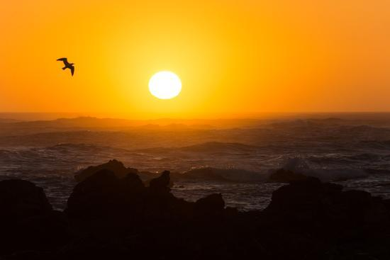 South Africa, Garden Route, Cape Agulhas, Sundown-Catharina Lux-Photographic Print