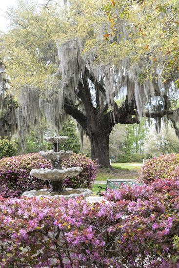 South Carolina, Frampton Plantation, Patio and Garden-Lisa S^ Engelbrecht-Photographic Print